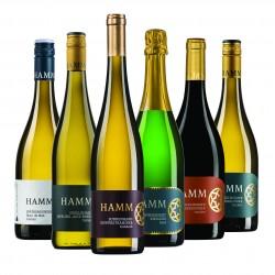 Unsere Lieblingsweine Weinprobe Hamm Wein Rheinhessen  Probierpaket