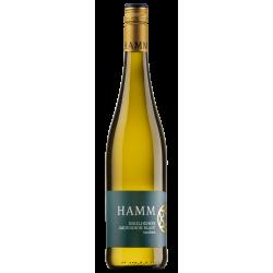 Sauvignon Blanc trocken Weingut Hamm Ingelheim Rheinhessen Weißwein An der Burgkirche  Spitzenklasse Weißwein